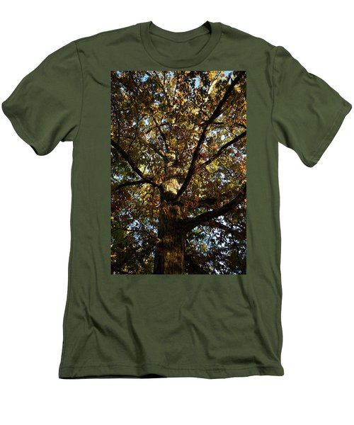 Leaves And Branches Men's T-Shirt (Athletic Fit)