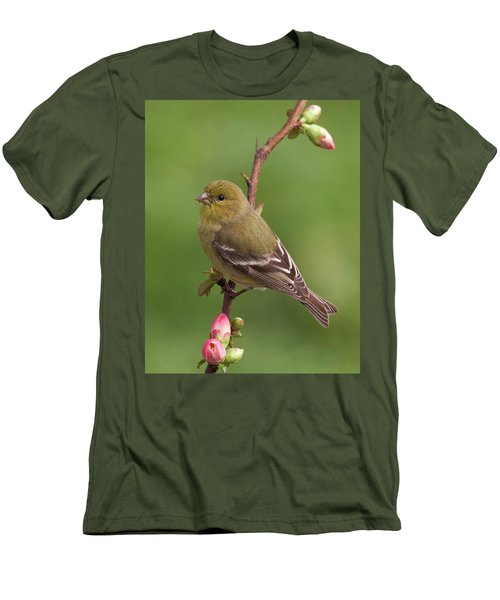 Men's T-Shirt (Slim Fit) featuring the photograph Lesser Goldfinch by Doug Herr