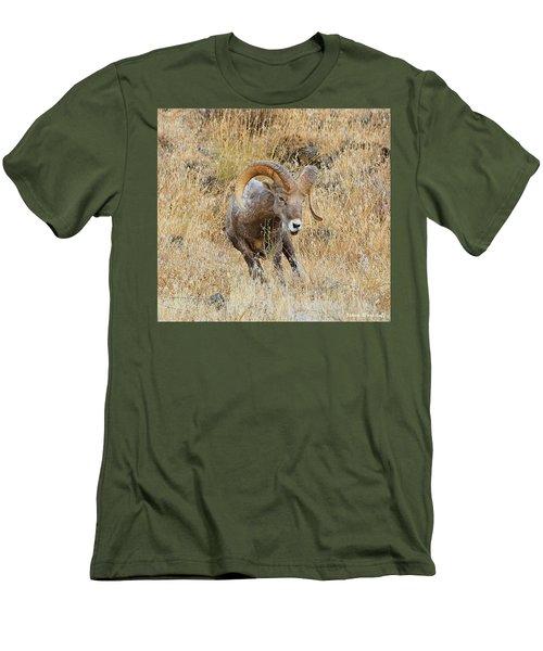 Let's Go IIi Men's T-Shirt (Athletic Fit)