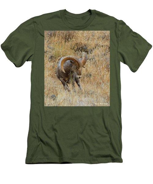 Let's Go Men's T-Shirt (Athletic Fit)