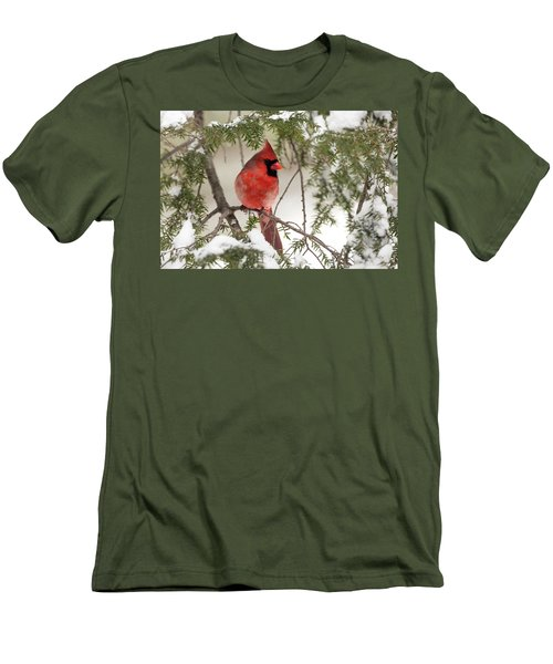 Men's T-Shirt (Slim Fit) featuring the photograph Leucistic Northern Cardinal by Everet Regal