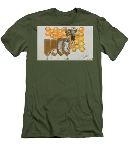 Life Cycle Of A Bee  Men's T-Shirt (Slim Fit)
