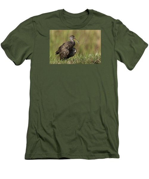 Limpkin Stretching In The Grass Men's T-Shirt (Athletic Fit)