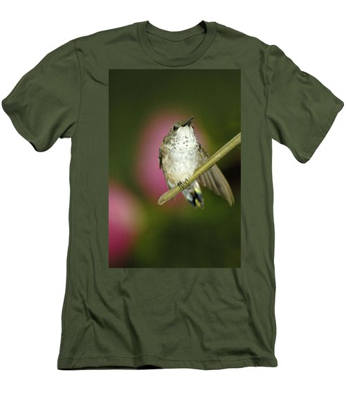 Little Humming Bird Men's T-Shirt (Athletic Fit)