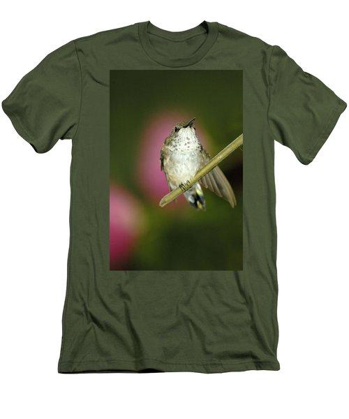 Little Humming Bird Men's T-Shirt (Athletic Fit)