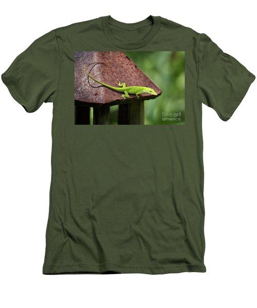Lizard On Lantern Men's T-Shirt (Slim Fit) by Stephanie Hayes