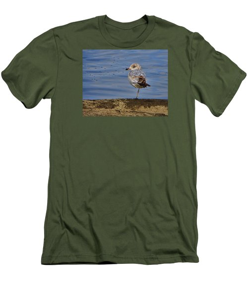 Lone Bird Men's T-Shirt (Athletic Fit)