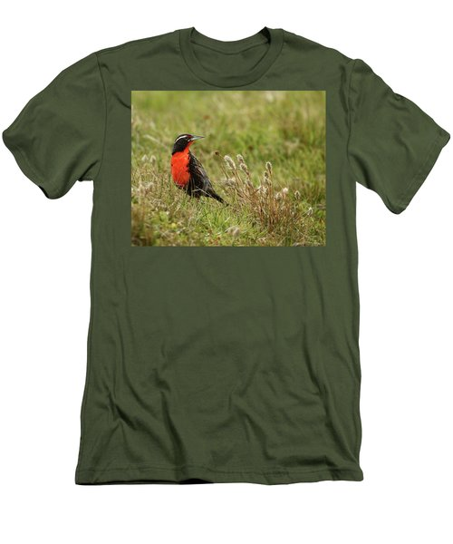 Long-tailed Meadowlark Men's T-Shirt (Slim Fit) by Bruce J Robinson