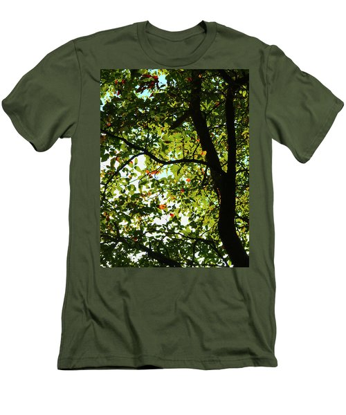 Looking Thru The Leaves Three Men's T-Shirt (Athletic Fit)