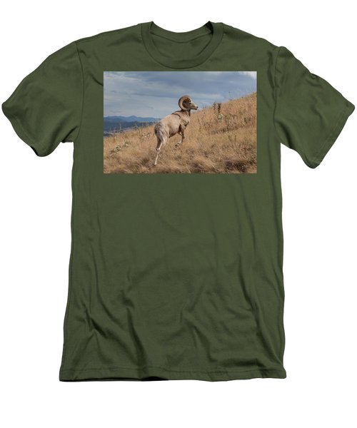 Men's T-Shirt (Athletic Fit) featuring the photograph Majestic Bighorn  by Fran Riley