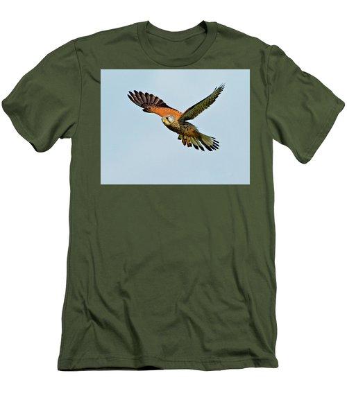 Male Kestrel In The Wind. Men's T-Shirt (Slim Fit) by Paul Scoullar