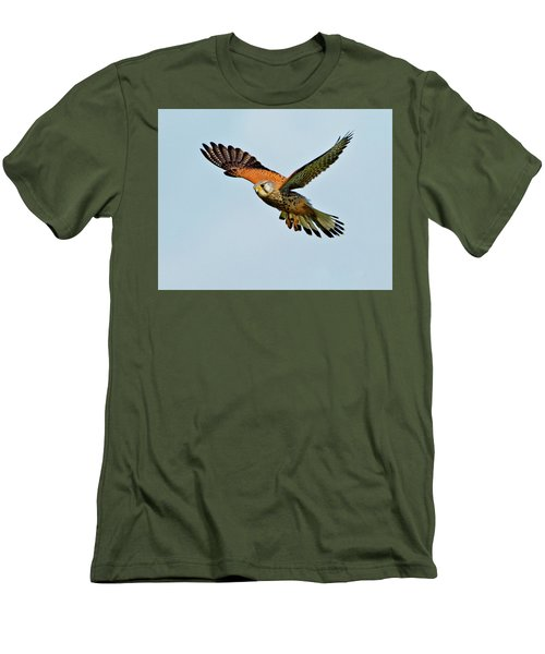 Male Kestrel In The Wind. Men's T-Shirt (Athletic Fit)
