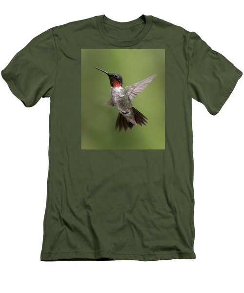 Male Ruby Throated Hummingbird Men's T-Shirt (Slim Fit) by David Lester
