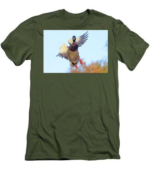 Mallard In Flight 2 Men's T-Shirt (Athletic Fit)
