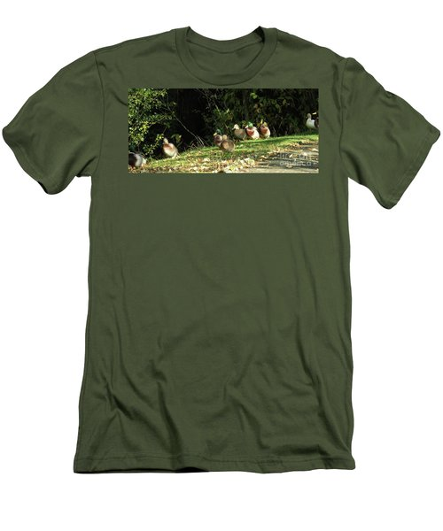Mallards Walk Men's T-Shirt (Athletic Fit)