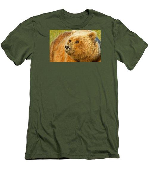 Mama Bear Close Up Men's T-Shirt (Athletic Fit)