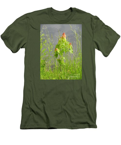 Maple On Lake Men's T-Shirt (Slim Fit) by Craig Walters