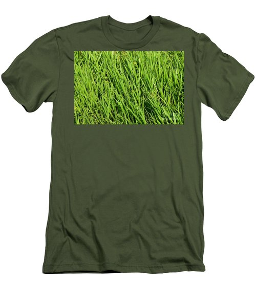 Marsh Grasses Men's T-Shirt (Athletic Fit)