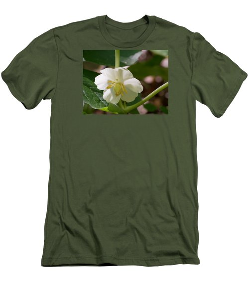 May-apple Blossom Men's T-Shirt (Slim Fit) by Linda Geiger