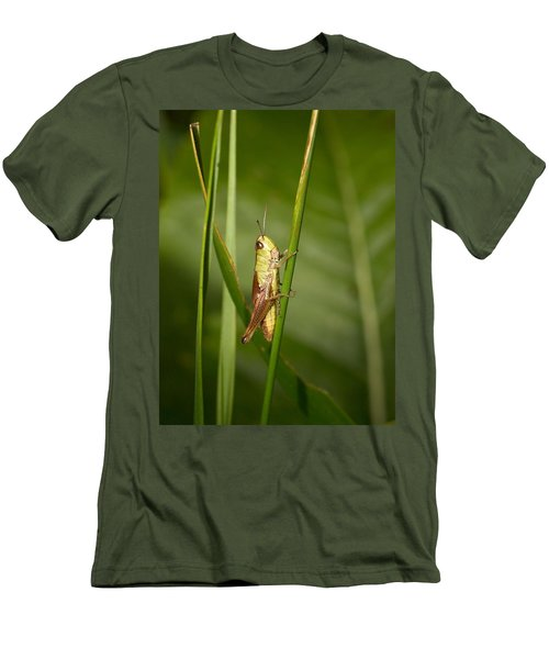 Men's T-Shirt (Slim Fit) featuring the photograph Meadow Grasshopper by Jouko Lehto