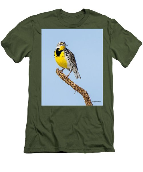 Meadowlark On Mullein Stalk Men's T-Shirt (Athletic Fit)
