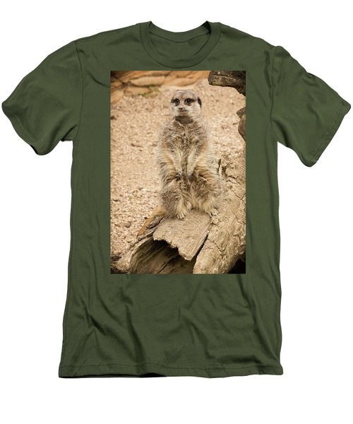 Meerkat Men's T-Shirt (Slim Fit) by Chris Boulton