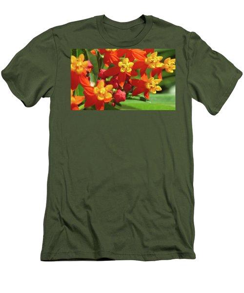 Milkweed Flowers Men's T-Shirt (Athletic Fit)