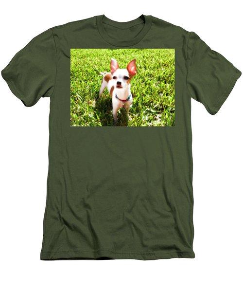 Mini Dog Men's T-Shirt (Slim Fit) by Josy Cue