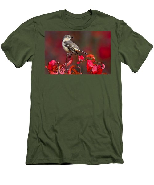 Mockingbird On Red Men's T-Shirt (Slim Fit) by William Jobes