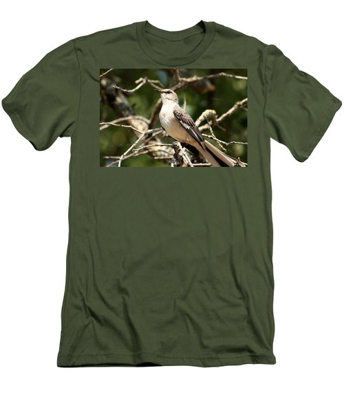 Men's T-Shirt (Slim Fit) featuring the photograph Mockingbird  by Sheila Brown