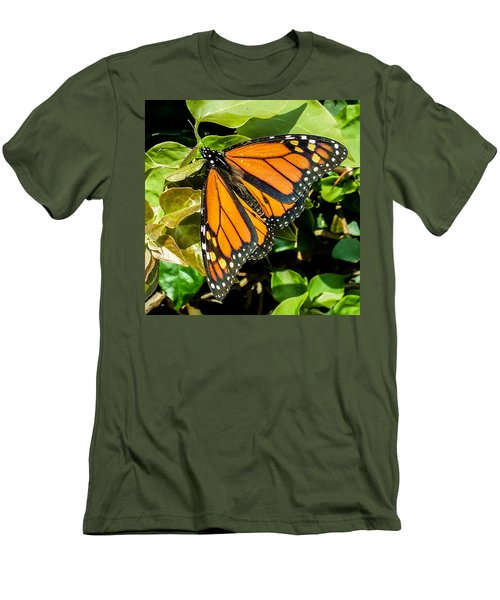 Monarch Men's T-Shirt (Slim Fit) by Mark Barclay