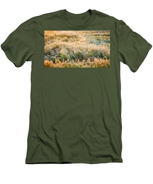 Morning Wheat Men's T-Shirt (Athletic Fit)