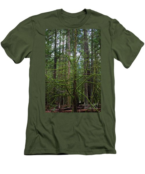 Moss Covered Tree Men's T-Shirt (Athletic Fit)