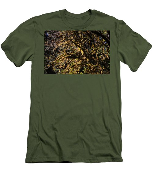 Mossy Trees Men's T-Shirt (Athletic Fit)