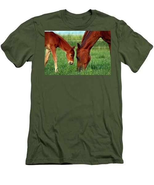 Mother And Foal 3377 H_2 Men's T-Shirt (Athletic Fit)