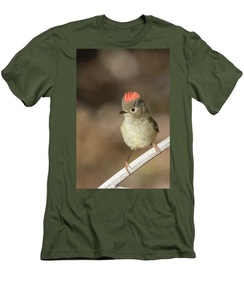 Men's T-Shirt (Slim Fit) featuring the photograph Mr Kinglet  by Mircea Costina Photography