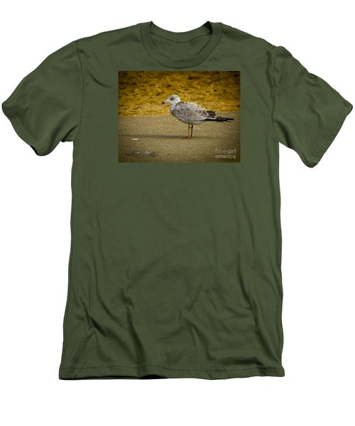 Men's T-Shirt (Slim Fit) featuring the photograph Mr. Seagull by Melissa Messick