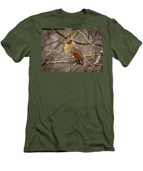 Men's T-Shirt (Slim Fit) featuring the photograph Mrs Cardinal by Douglas Stucky