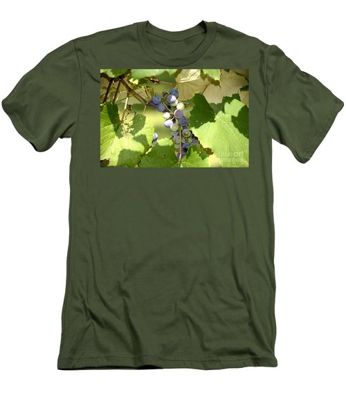 Muscadine Grapes Men's T-Shirt (Athletic Fit)