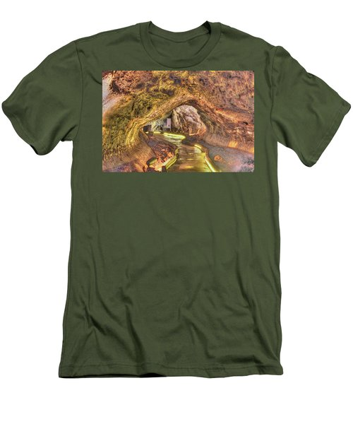 Mushpot Cave Men's T-Shirt (Slim Fit) by Richard J Cassato