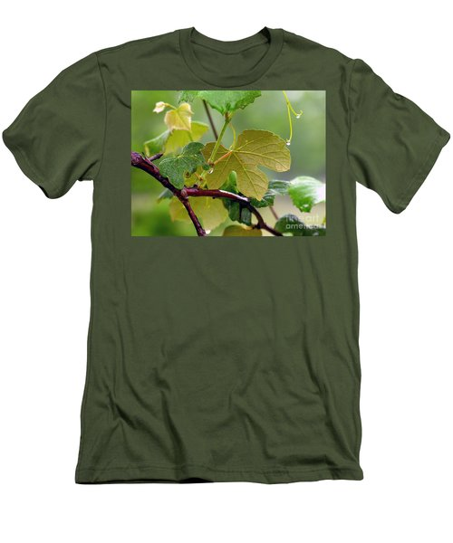 My Grapvine Men's T-Shirt (Athletic Fit)