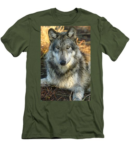 Men's T-Shirt (Slim Fit) featuring the photograph Noble Lupine by Shari Jardina