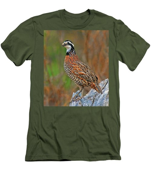 Northern Bobwhite Men's T-Shirt (Slim Fit) by Dave Mills