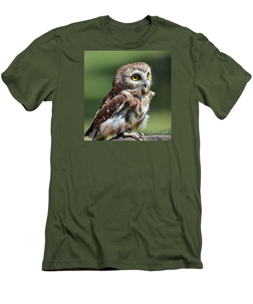 Northern Saw Whet Owl Men's T-Shirt (Slim Fit) by Amy Porter