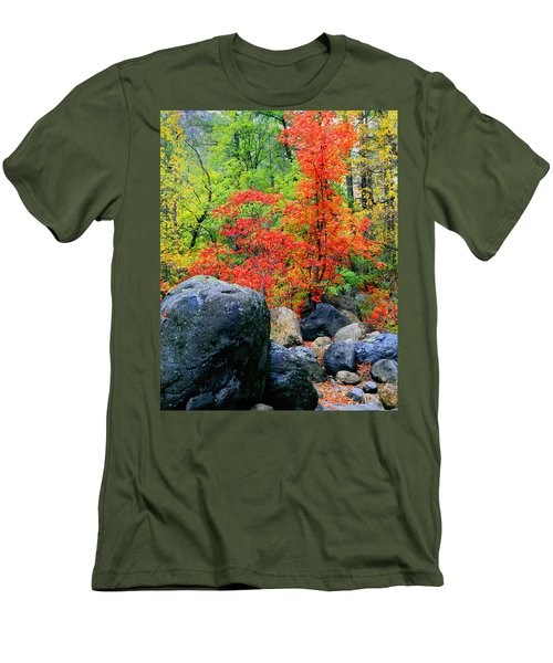 Oak Creek Canyon Red Men's T-Shirt (Athletic Fit)
