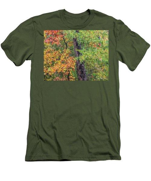 Oak Hickory Woodland Men's T-Shirt (Slim Fit) by Tim Fitzharris