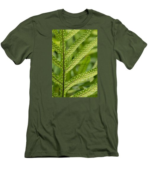 Oh Fern Men's T-Shirt (Slim Fit) by Christina Lihani