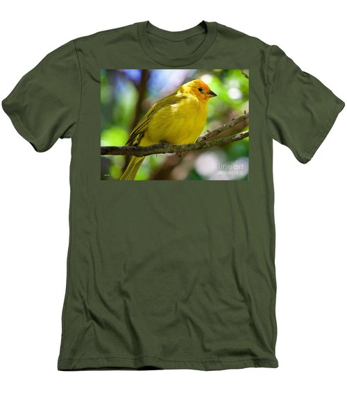 Ole Yellow Men's T-Shirt (Slim Fit) by Judy Kay