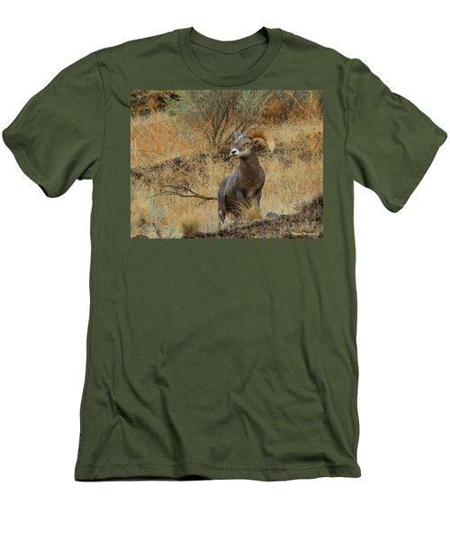 On Guard Men's T-Shirt (Slim Fit) by Steve Warnstaff