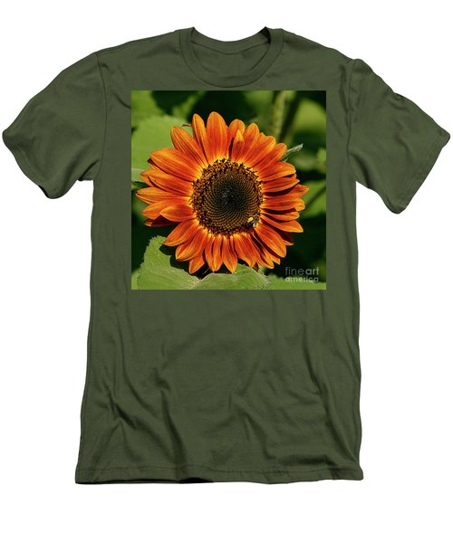 Orange Sunflower Men's T-Shirt (Athletic Fit)